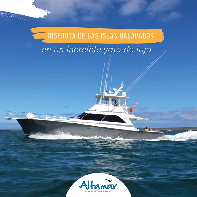 Have a Fun-Filled Yacht Experience in the Galapagos Islands with These Tips