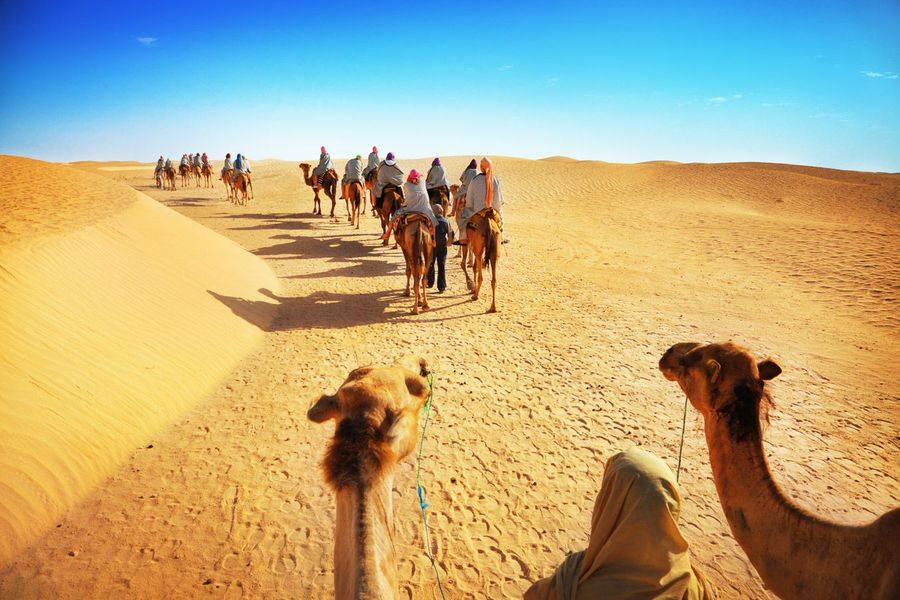 Great Dubai Desert Safaris