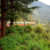 The most mesmerizing train journeys in India that are bound to leave you spellbound