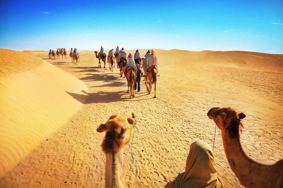 Great Dubai Desert Safaris