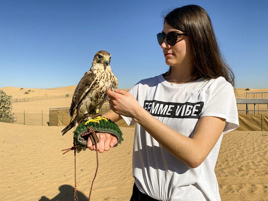 Sunrise Desert Safari in Dubai Is A New Adventure Option In Middle East